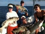 Goliath Grouper Fishing Charters