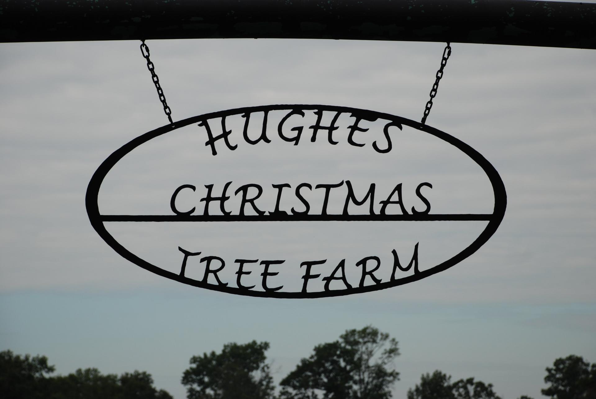 hughes christmas tree farm benton la logo - Christmas Tree Farm Louisiana